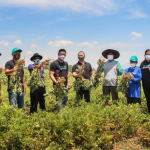 Berdayakan Petani Kacang Tanah, TaniHub Group Jalin Kerja Sama dengan Garudafood